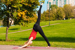Young beautiful girl is engaged in yoga, outdoors in a park Stock Photos