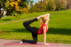 Young beautiful girl is engaged in yoga, outdoors in a park Stock Photography