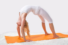 Young beautiful girl is  engaged in yoga Stock Image