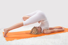 Young beautiful girl is  engaged in yoga Royalty Free Stock Images