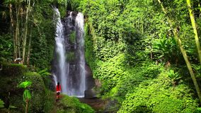 Young beautiful girl enjoy the scenic view of the waterfall Munduk on a background tropical nature island Bali. Scenery video Natural Waterfall Munduk with clean stock footage