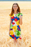 Young beautiful girl in the field. Royalty Free Stock Image