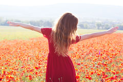 Young beautiful girl in the field of poppies Stock Image