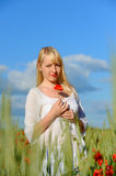Young beautiful girl in the field Stock Image