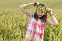 Young beautiful girl in a field of wheat Royalty Free Stock Images