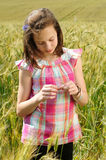 Young beautiful girl in a field of wheat Royalty Free Stock Photography