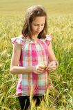 Young beautiful girl in a field of wheat Royalty Free Stock Photo