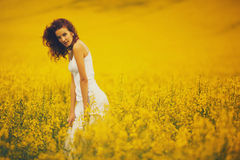 Young beautiful girl in the field Royalty Free Stock Photography