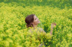 Young beautiful girl in field with yellow flowers royalty free stock image