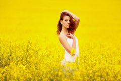 Young beautiful girl in the field Royalty Free Stock Photo