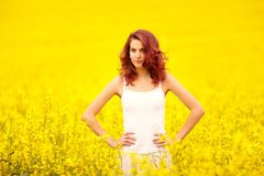 Young beautiful girl in the field stock images