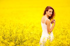 Young beautiful girl in the field. Young beautiful girl in the yellow field Stock Photos