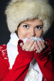 The young beautiful girl in a fur cap has control Stock Image