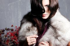 Young beautiful girl in a fur collar Stock Photography