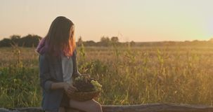 Young beautiful girl holding basket of organic fresh grapes and eating grapes. Rustic style, natural landscape golden hour stock video footage