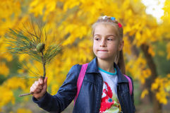 Young beautiful girl holding a branch of a christmas tree Royalty Free Stock Image