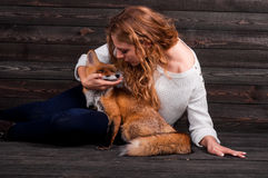 A young beautiful girl holding a wild fox animal that was traumatized by a man and rescued by her and now lives as before Royalty Free Stock Images