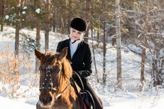 Young beautiful girl jockey riding a horse in winter forest Stock Image