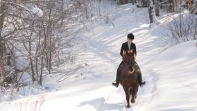 Young beautiful girl jockey riding a horse in winter forest stock footage