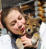 Young beautiful girl kisses a puppy Stock Images