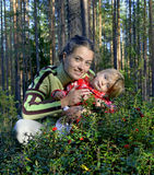The young beautiful girl with the little daughter picking  bilberry Royalty Free Stock Image