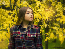 Young beautiful girl in the nature Royalty Free Stock Image
