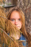 Young beautiful girl in a pine forest. Royalty Free Stock Photography