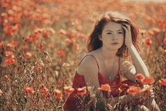 Young beautiful girl in poppy field Stock Image
