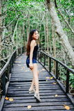 Young beautiful girl portrait on the wooden bridge in the mangrove forest stock images
