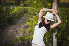 Young beautiful girl posing in fall vineyard Royalty Free Stock Photo