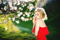 Young beautiful girl posing in the summer garden. The concept of youth, fashion. Royalty Free Stock Photos