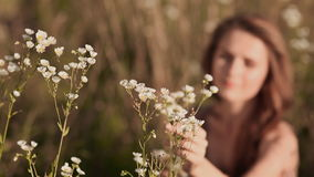 Young beautiful girl sitting on green meadow and collects white flowers. Closeup. stock video