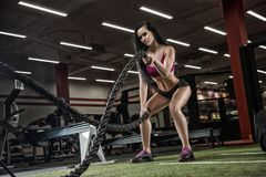 Young beautiful girl sports a bodybuilder in a modern gym traini Royalty Free Stock Photos