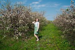 Young beautiful girl in spring blooming gardens Royalty Free Stock Image