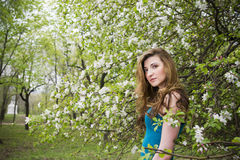 Young beautiful girl in spring blooming gardens.  Stock Photos