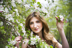 Young beautiful girl in spring blooming gardens.  Royalty Free Stock Photo