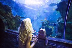 A young beautiful girl standing in front of a big shark Stock Images