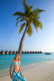 Young beautiful girl stands near  palm tree on bac Stock Image