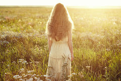 Young beautiful girl on a summer field. Beauty summertime. Fashion photo stock images