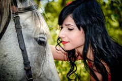A young beautiful girl  touches a white horse. Stock Photos