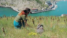 Beautiful red-haired girl in a cowboy hat walks through the mountains by the sea. Young beautiful girl traveler in a cowboy hat walks and collects medicinal stock video footage