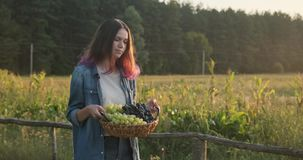 Young beautiful girl walking with a basket of grapes stock footage