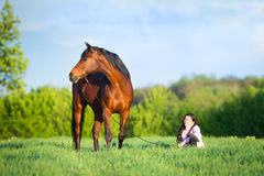 Young beautiful girl walking with a horse in the field. Young beautiful girl walking with a bay horse in the field in spring Stock Photo