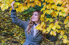 The young beautiful girl walks in the autumn park among yellow leaves in a coat on a sunny day Stock Photos
