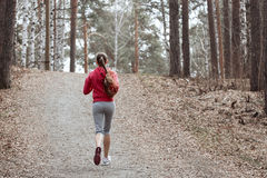 Young beautiful girl warming up before a jog in the Park Royalty Free Stock Photography