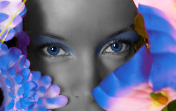 Young beautiful girl watching through flowers. Blue eyes Royalty Free Stock Photography