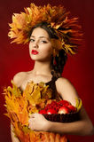 The young beautiful girl in a wreath of yellow leaves with a basket of fruit Stock Image