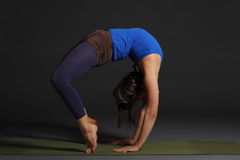 Young beautiful healthy yoga woman instructor doing yoga in photo studio. Royalty Free Stock Photos