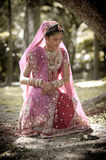Young beautiful Indian Hindu bride sitting under tree Royalty Free Stock Image