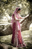 Young beautiful Indian Hindu bride standing under tree. In bridal gown Royalty Free Stock Images